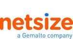 logo netsize